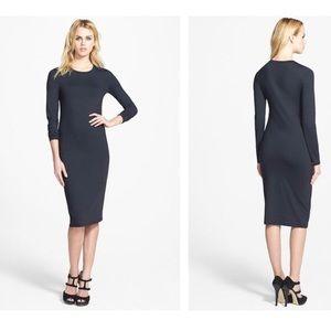 Super Sexy Long Sleeve Midi Style Dress